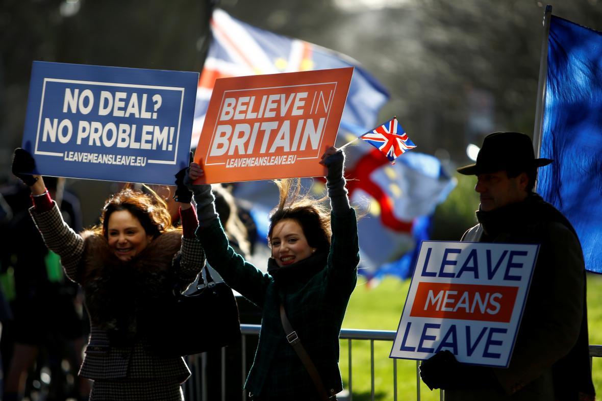 Zastánci brexitu prostestují před britským parlamentem