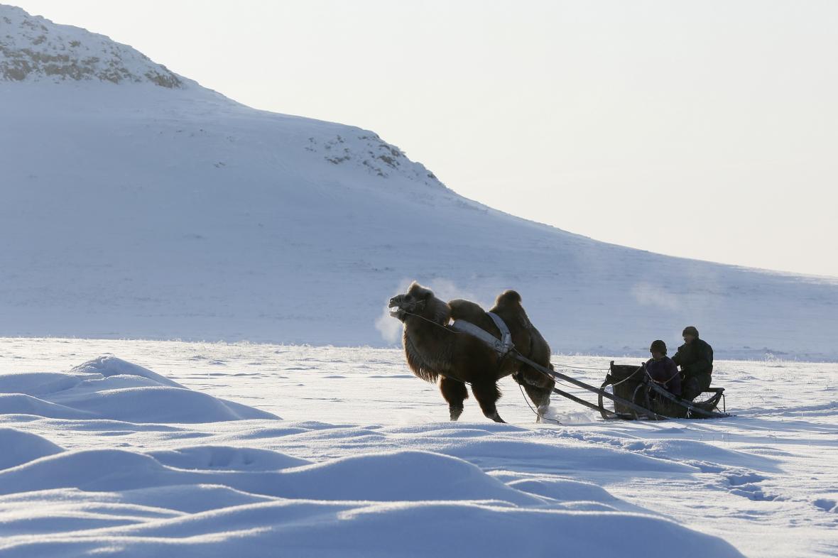 Ze Sibiře už bílý sníh mizí
