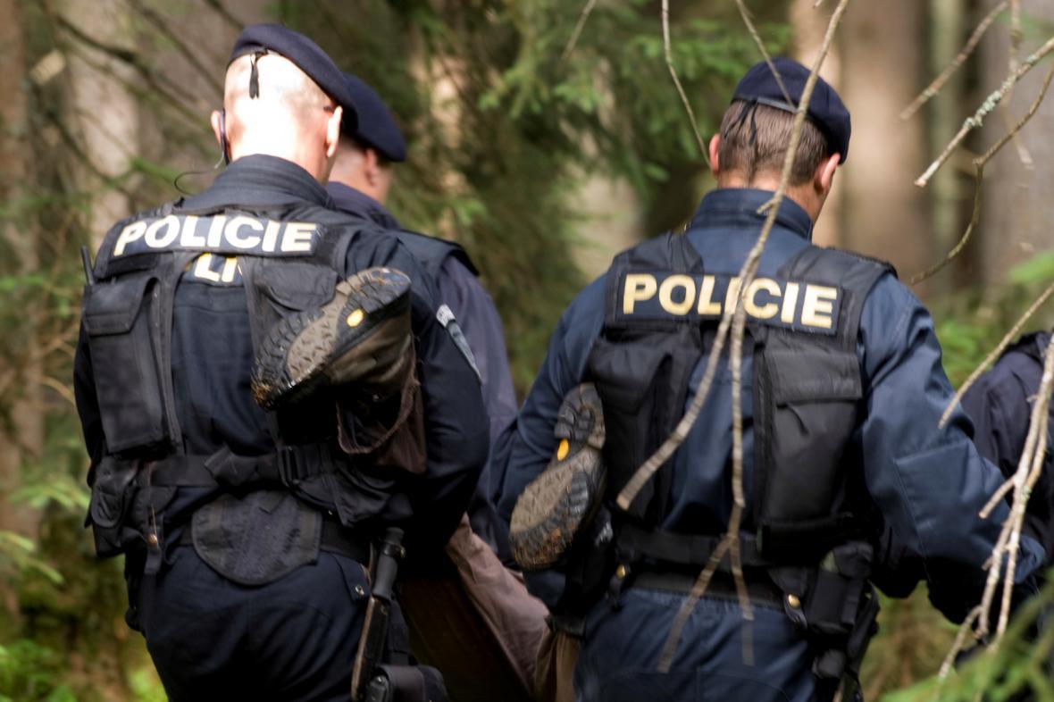 Policejní zásah proti ekologickým aktivistům na Šumavě, 2011