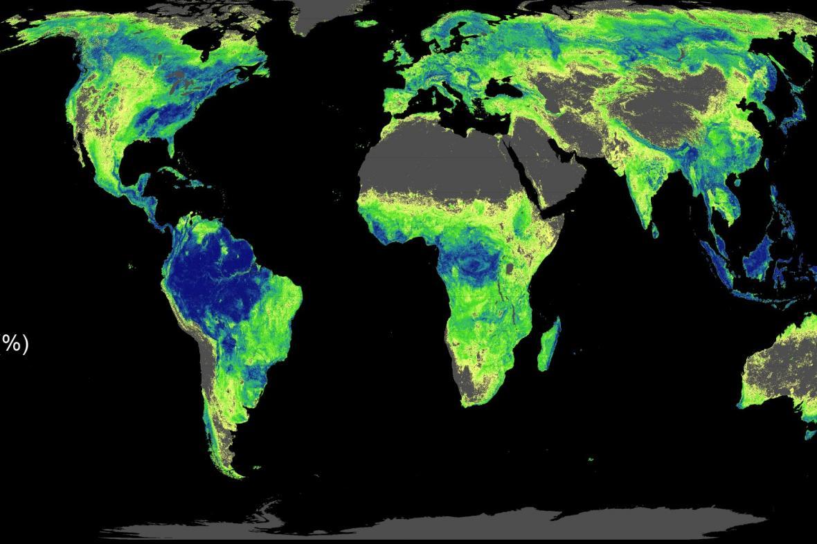 Místa s největším potenciálem pro nové stromy