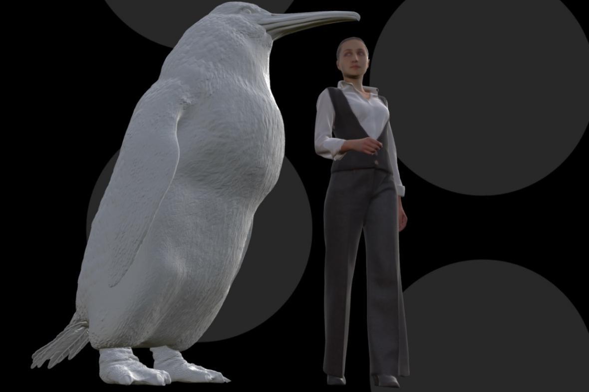 Pravěký tučňák