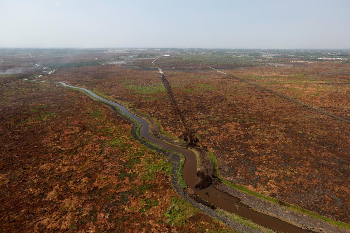 Vykácený deštný prales v Brazílii