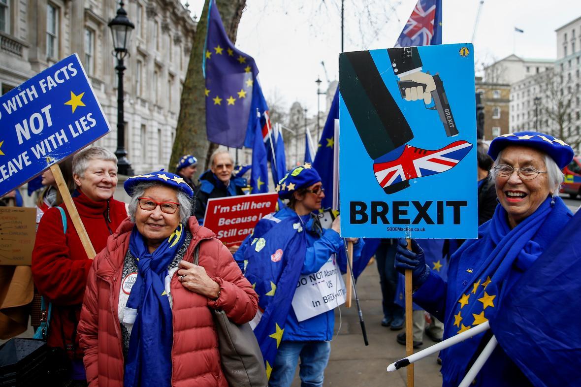 Demonstrantky proti brexitu