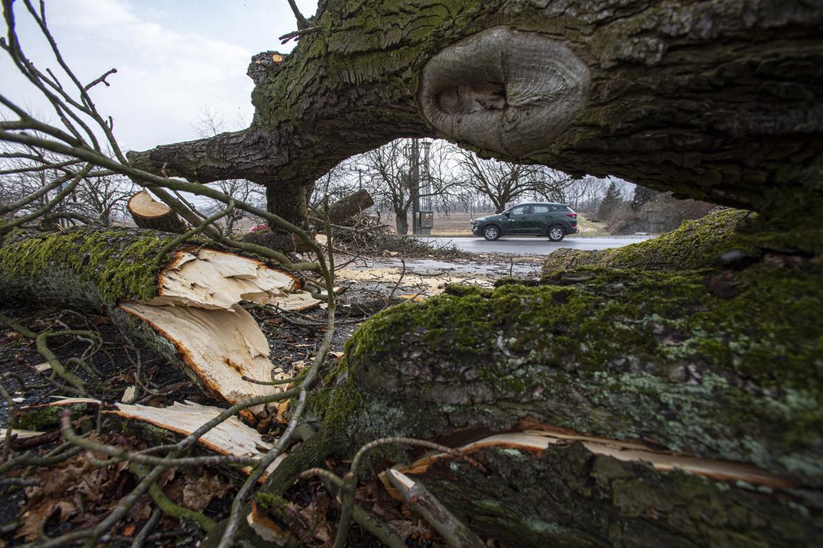 Následky bouře Sabina