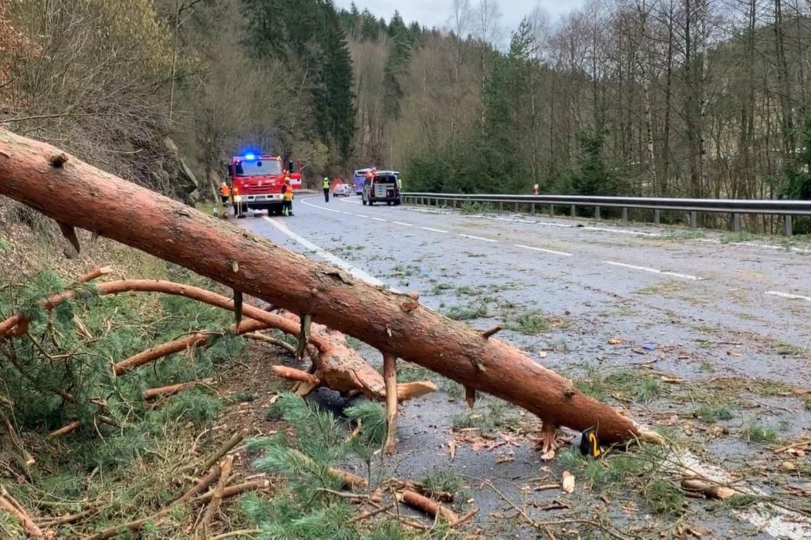 Strom spadlý v důsledku silného větru