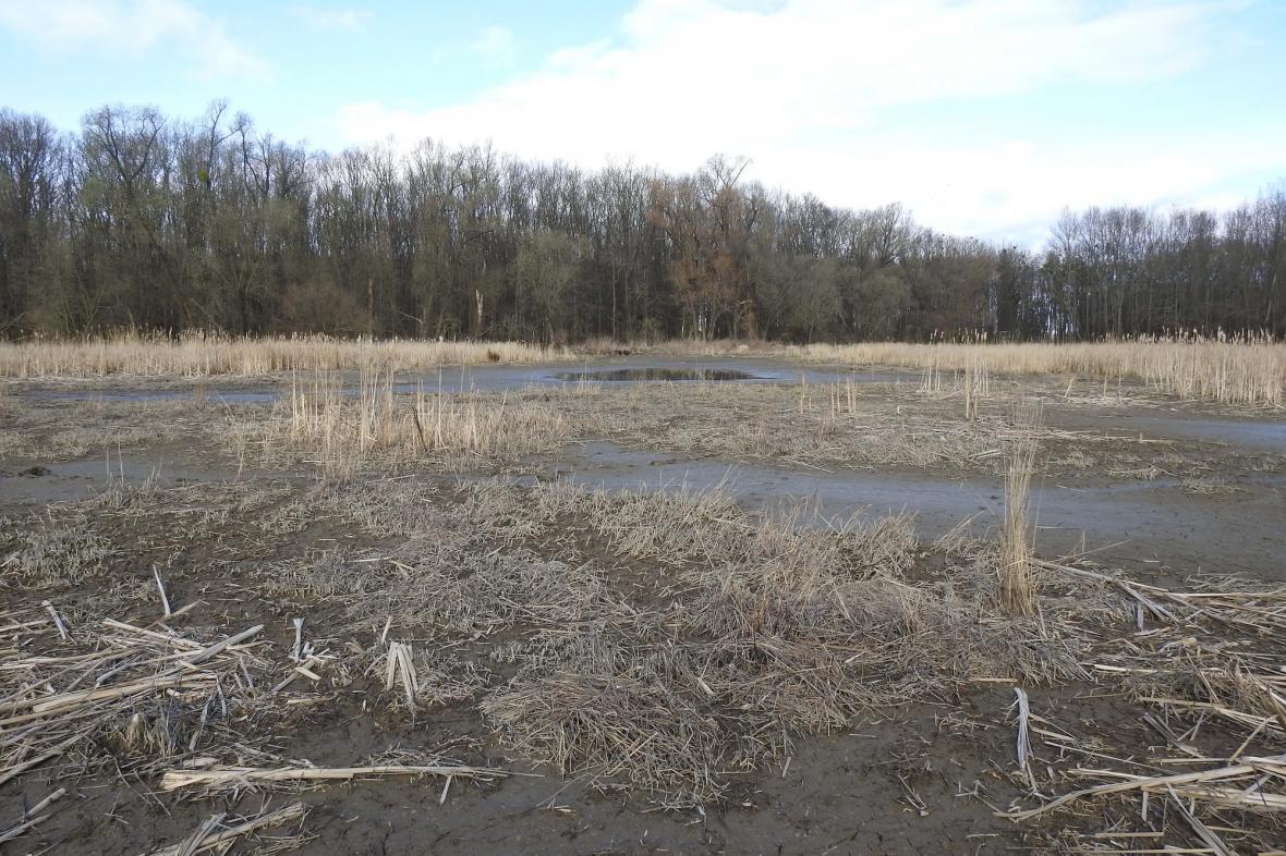 14. března 2020 zůstalo jen několik čtverečních metrů vody
