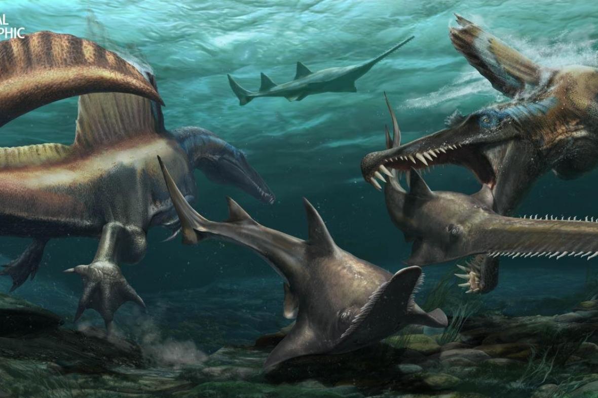 Umělecká představa o podobě spinosaura