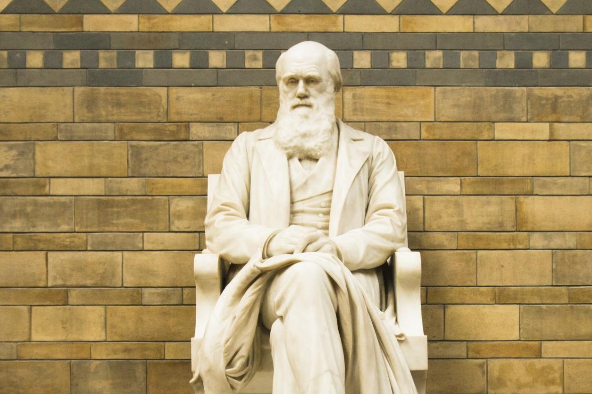 Socha Charlese Darwina