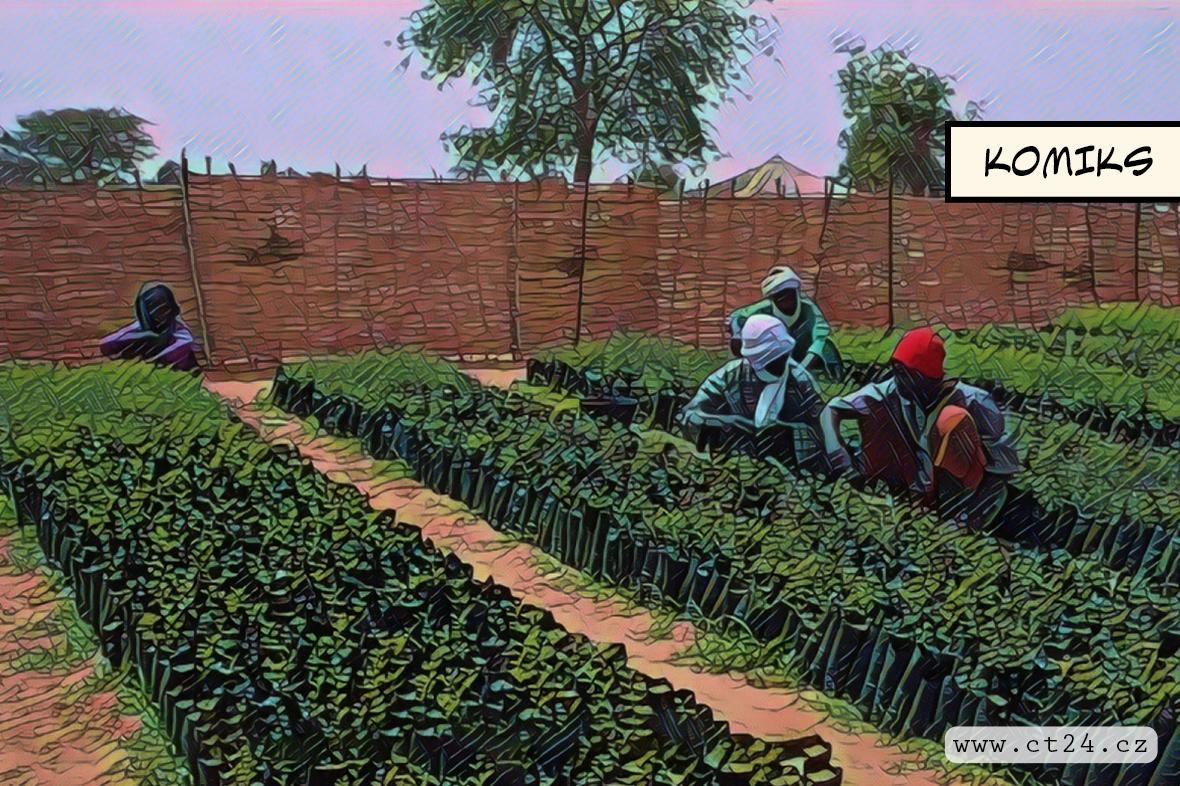Zelená zeď může pomoct zastavit Saharu