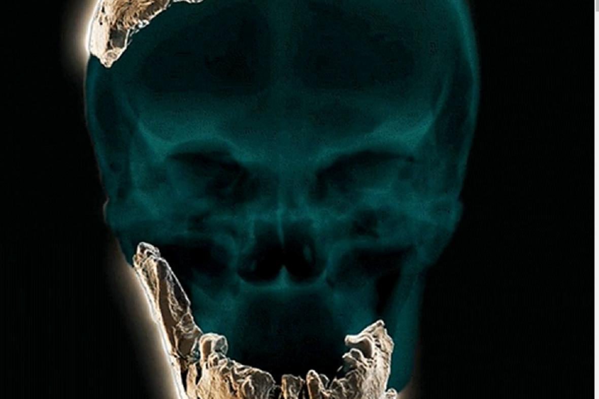Rekonstrukce lebky Homo Nešer Ramla