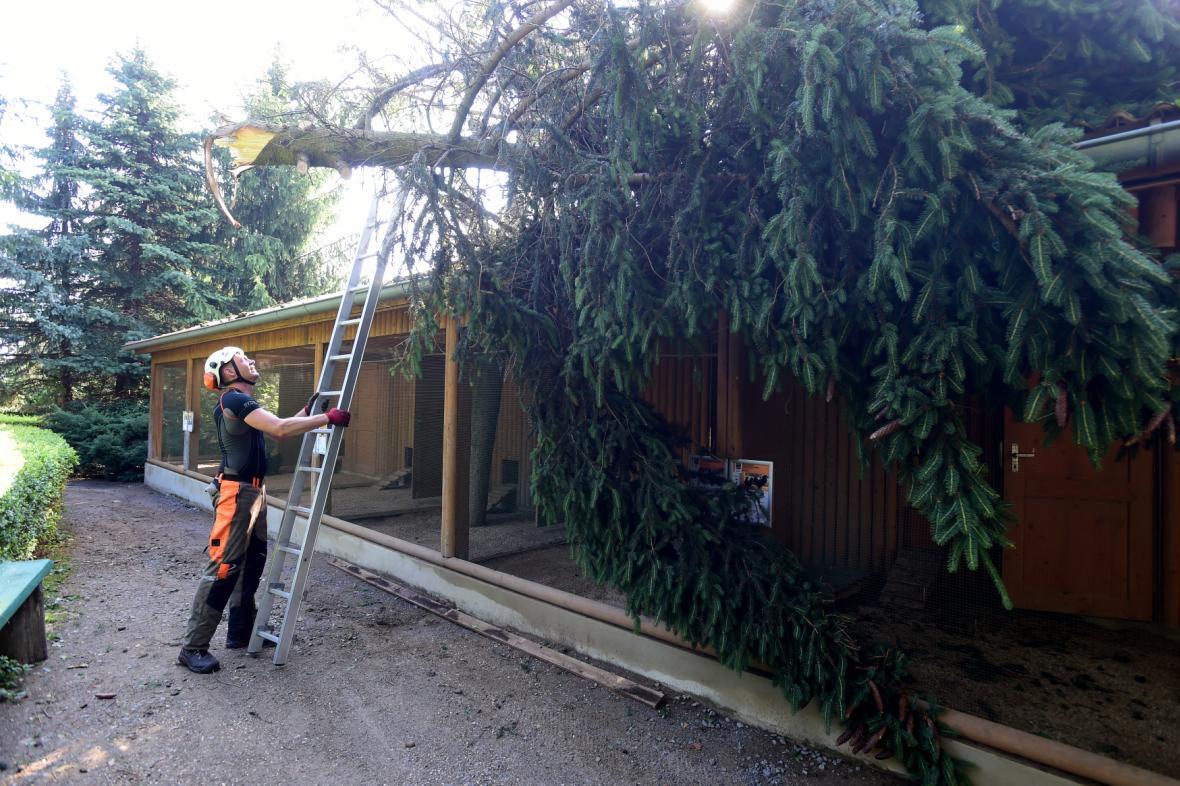 Na postižených místech probíhá odklízení sutin, popadaných stromů a začínají opravy