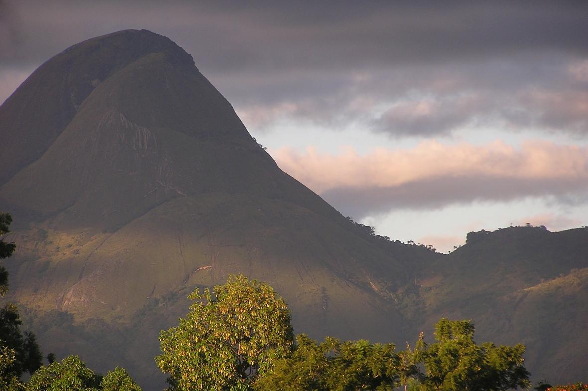 Lesy na Mozambiku