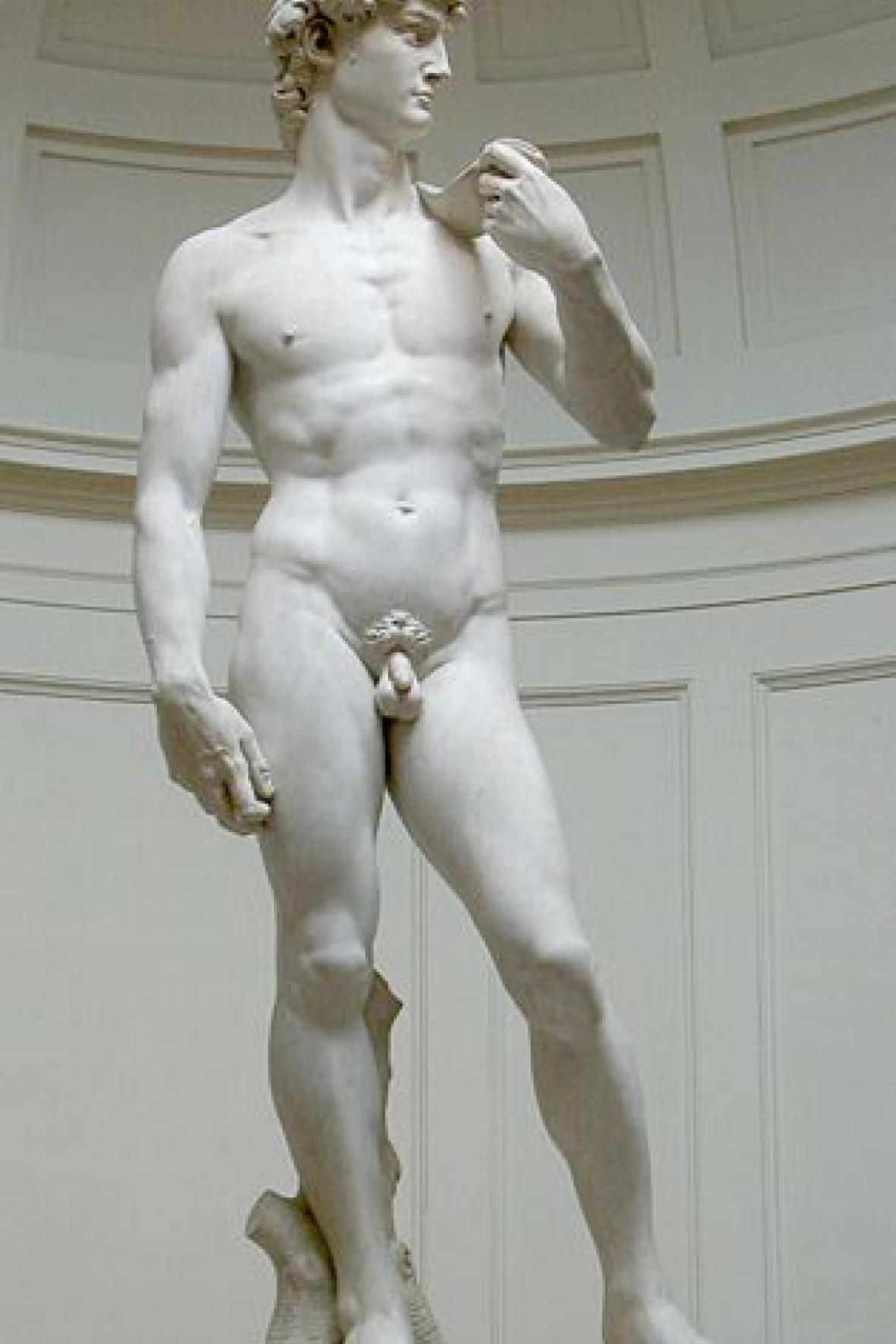Michelangelův David