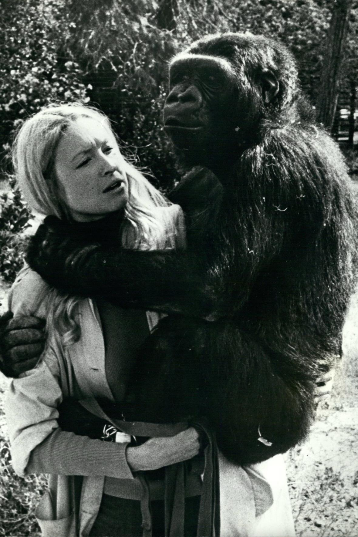 Francine Pattersonová a Koko