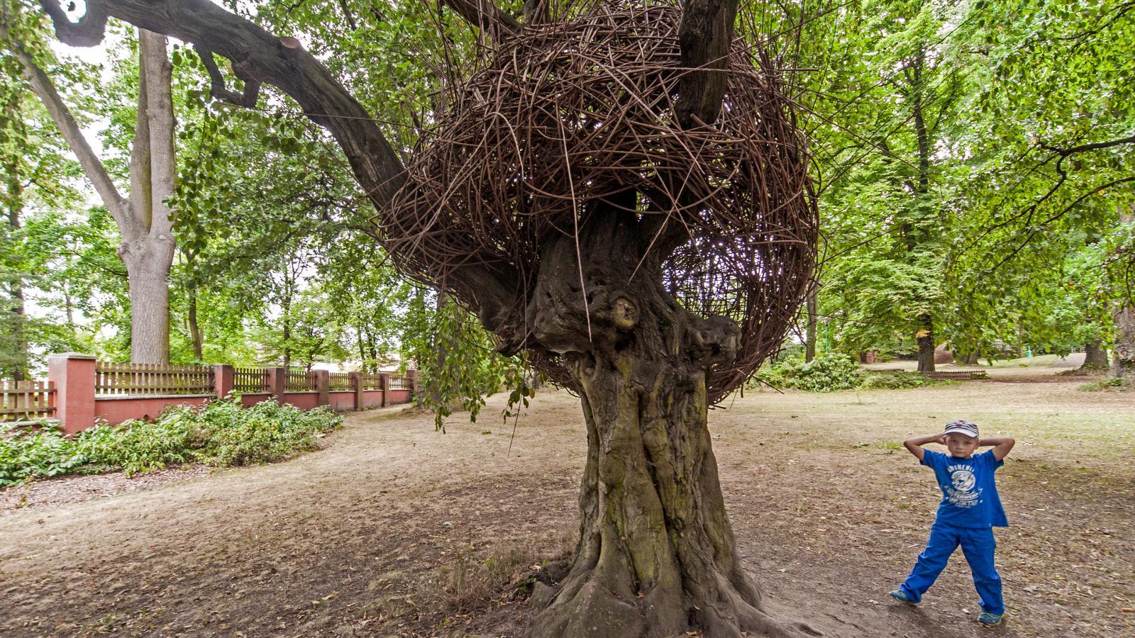 Hnízdo, Stinná – Strančice