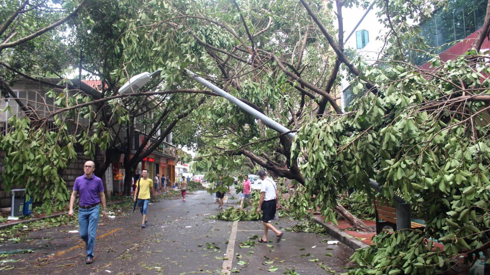 Následky řádění tajfunu v Číně