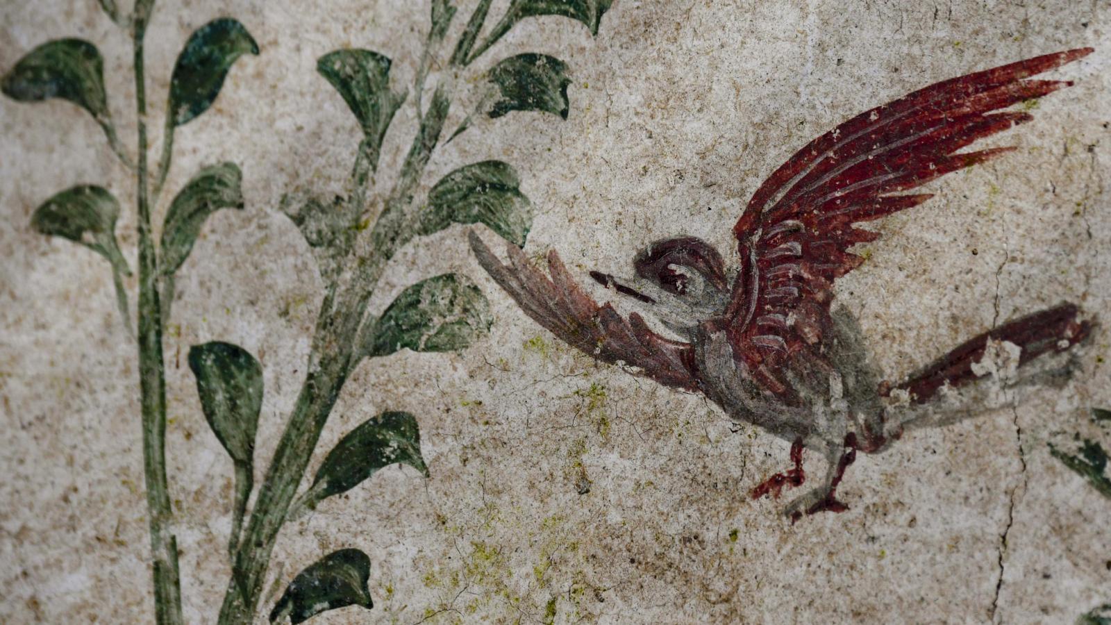 Kouzelná zahrada v Pompejích