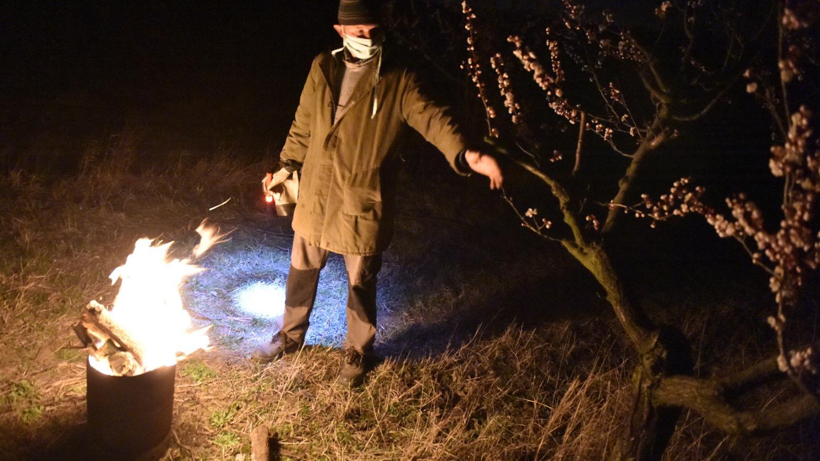 Ovocnáři chrání sady před mrazem