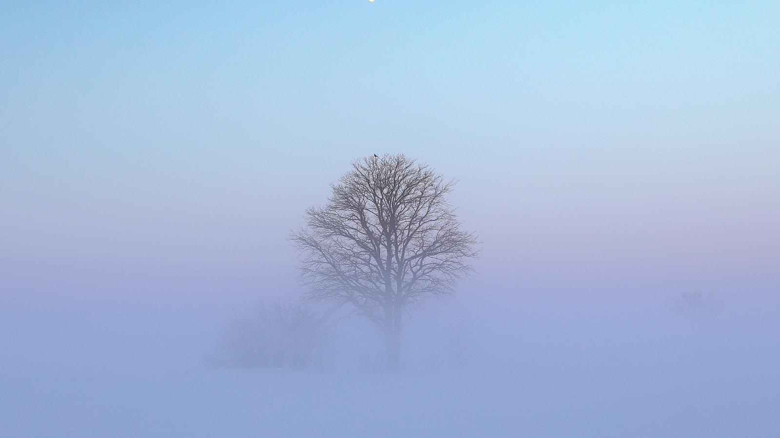 Malebné mlhy
