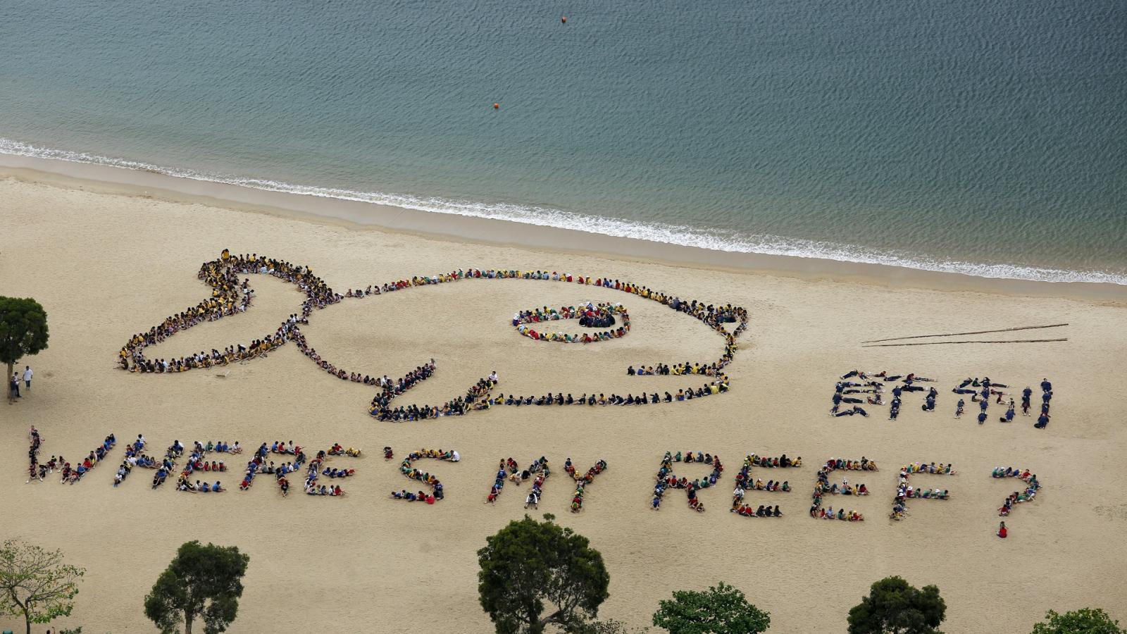 Ekologická aktivita dětí a učitelů v Hongkongu