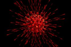 Nový koronavirus, ilustrační foto