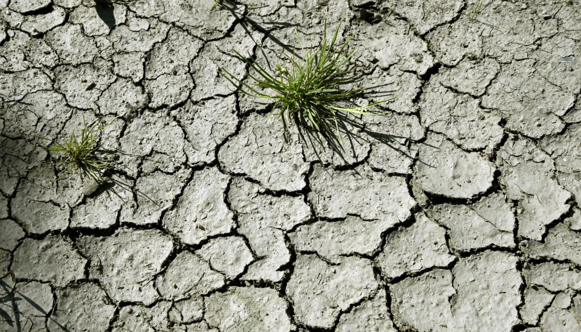 Vysušená a popraskaná půda