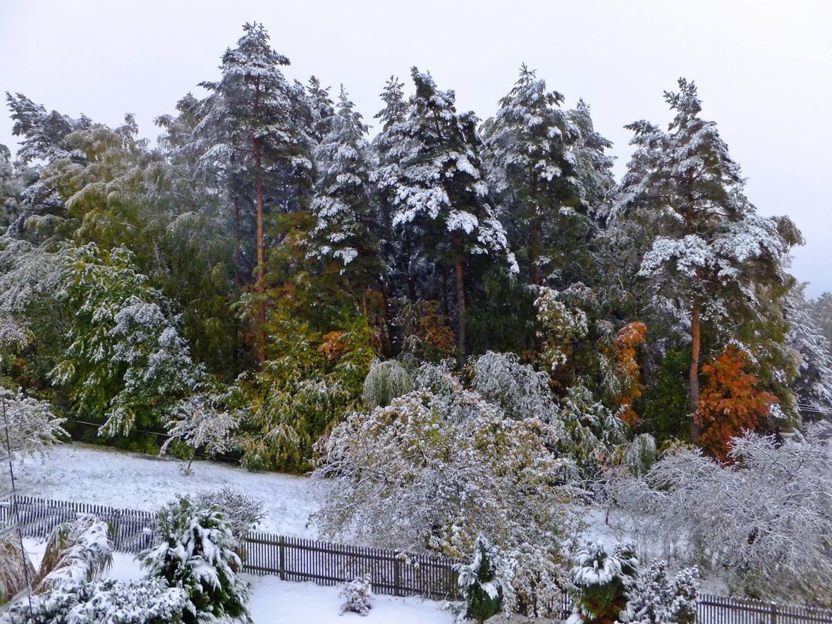Zasněžené ráno v Habartově na Sokolovsku