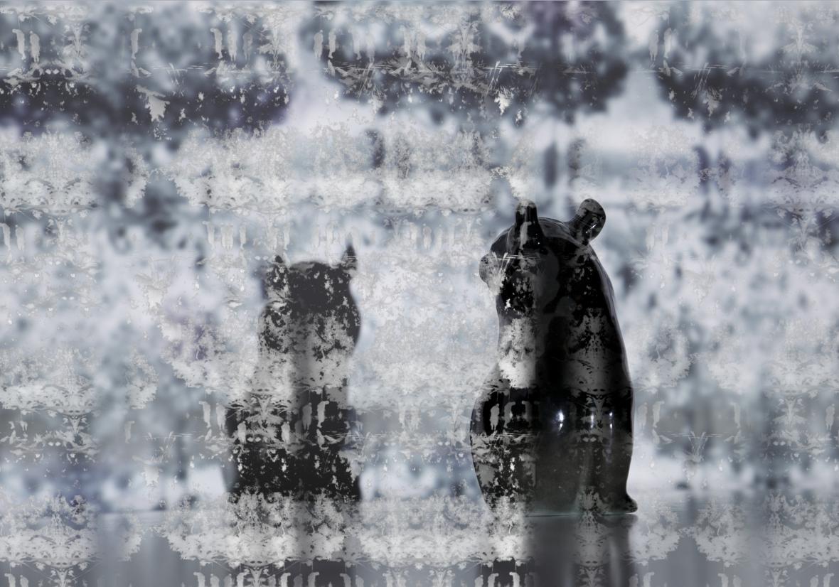 Štěpánka Šimlová / ze série Still Lifes of Microworlds, 2015