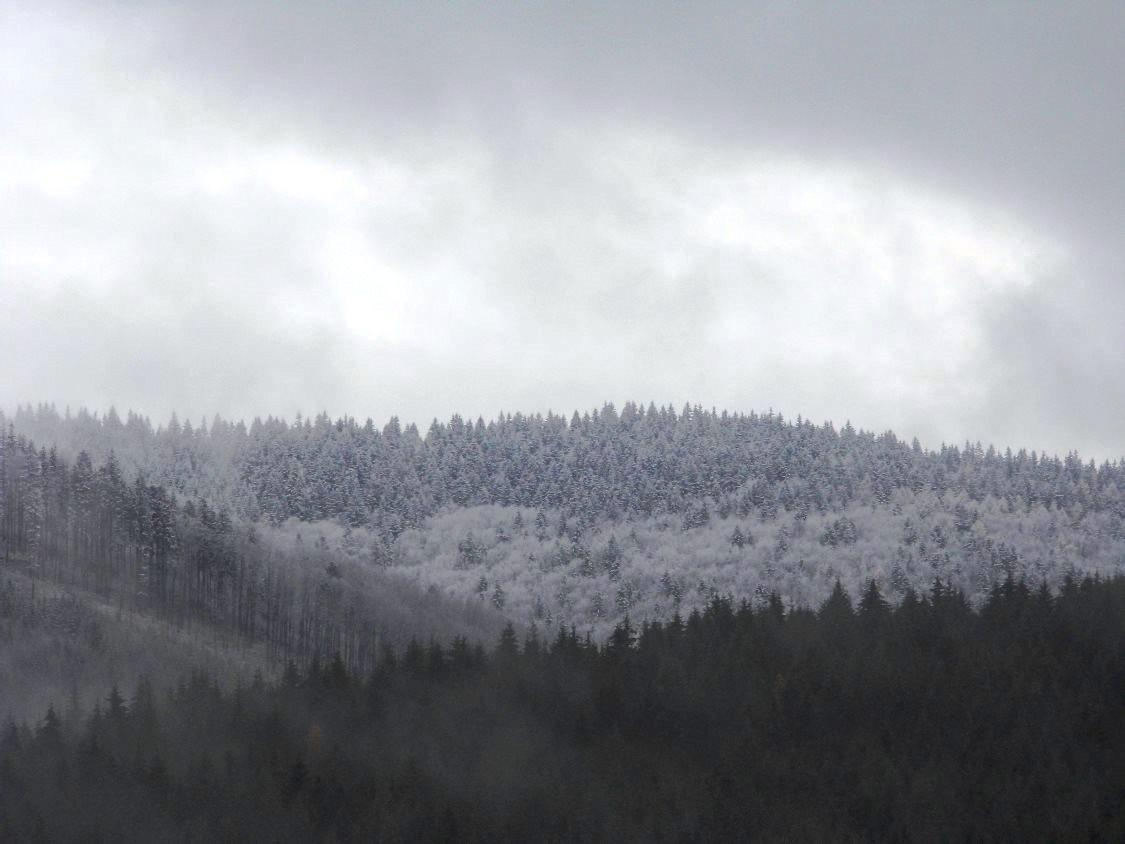 Sníh v Beskydech