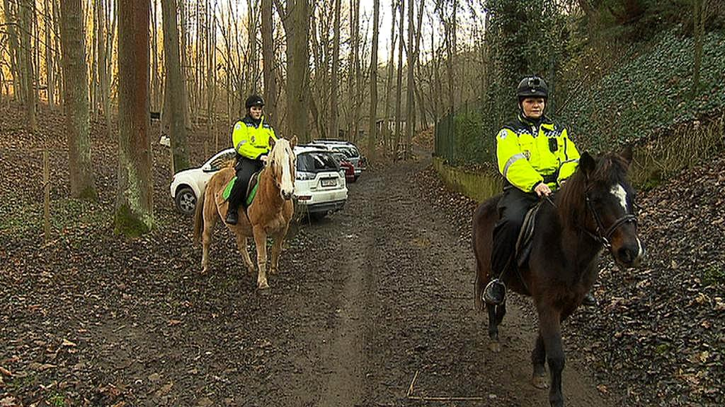 Strážnice Obecní policie Zdiby na koních