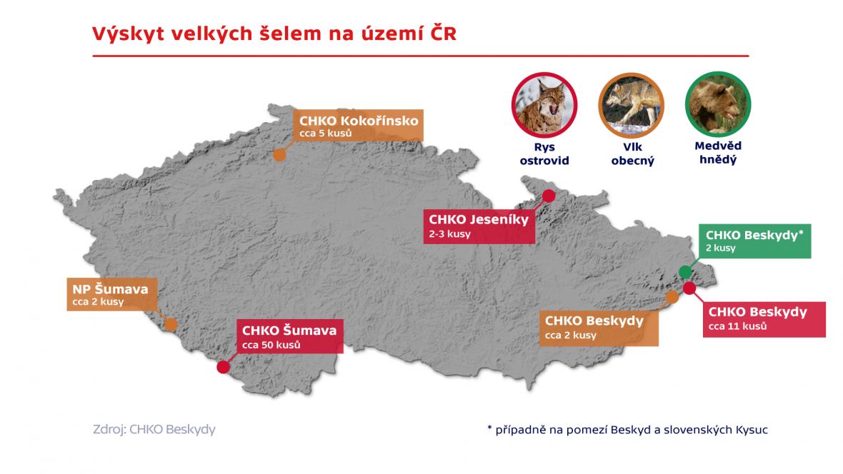 Výskyt velkých šelem na území ČR