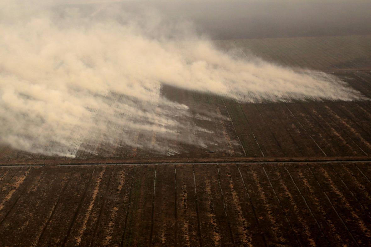 Hořící indonéský prales