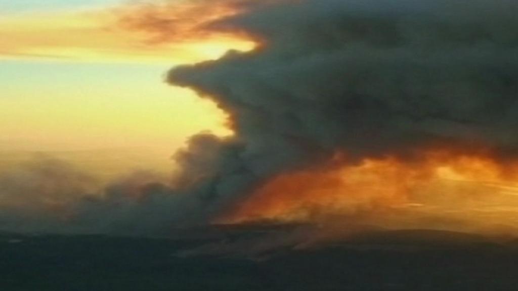 Požár karmelského lesa v roce 2010