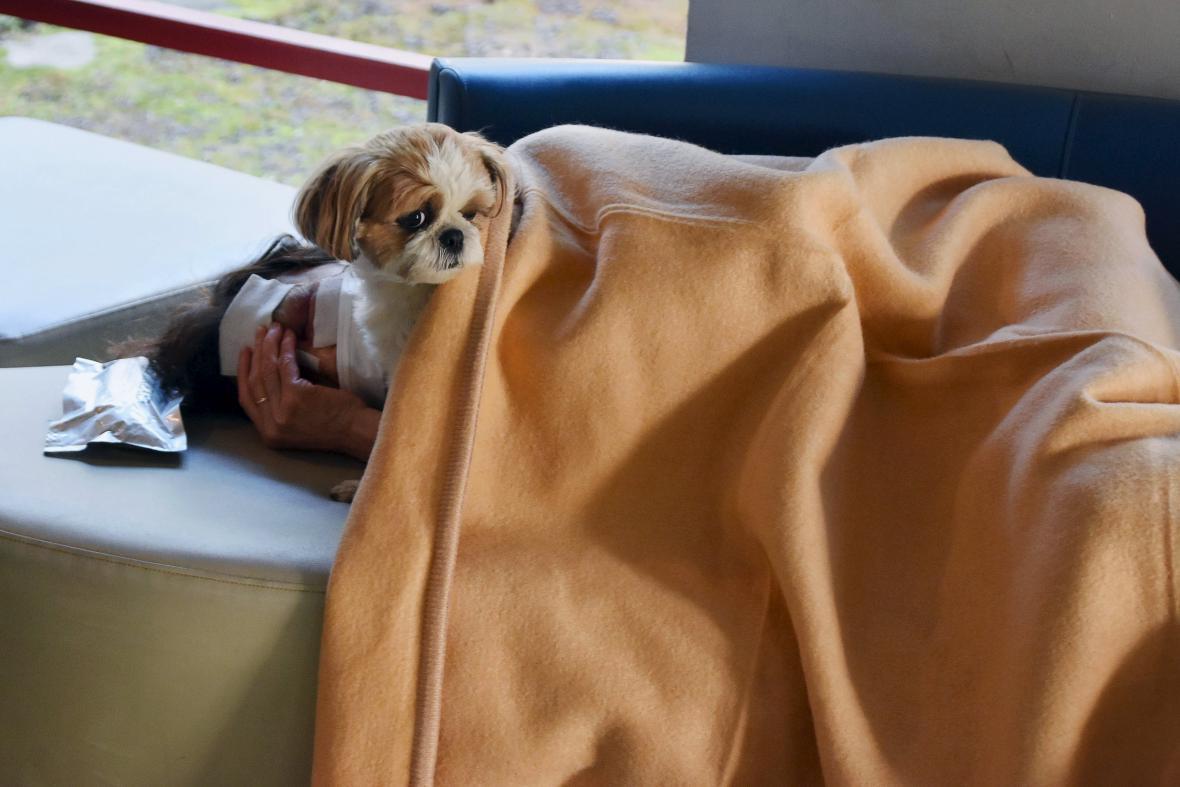 Zraněná žena v evakuačním centru