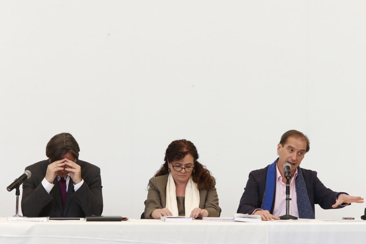 Mezinárodní panel vyšetřovatelů