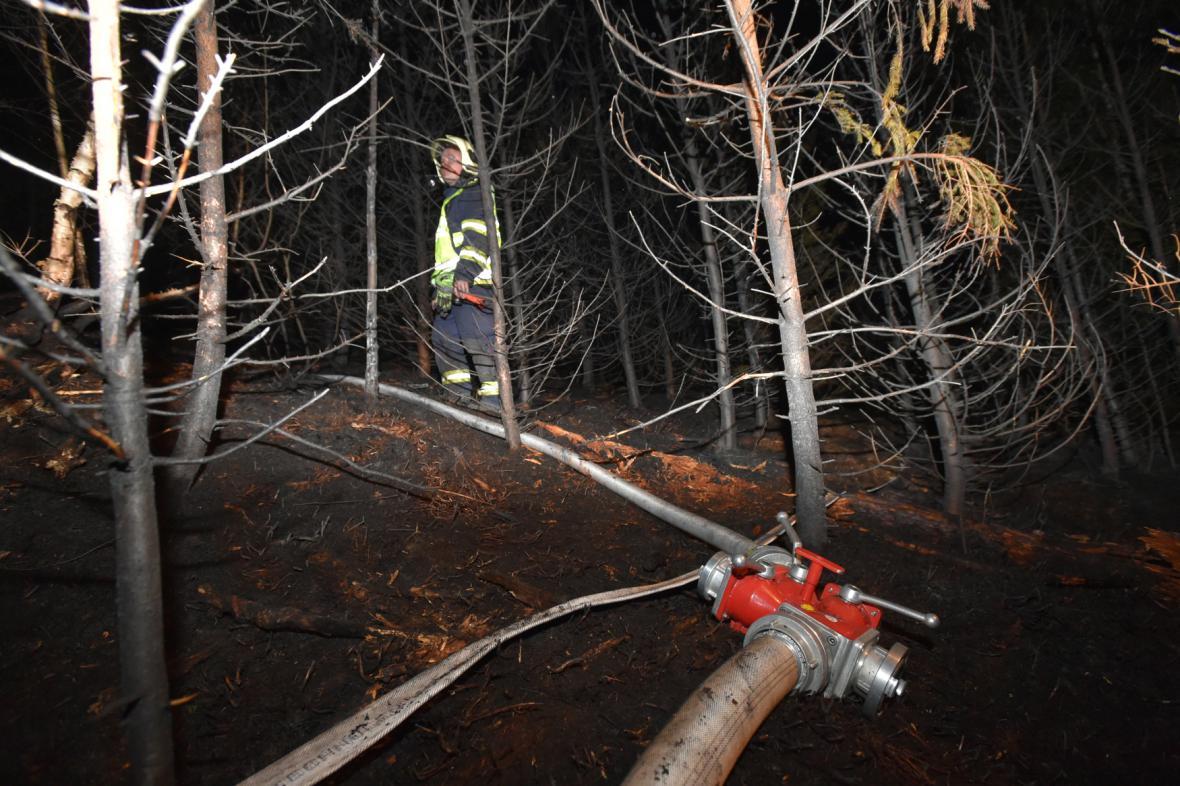 Požár lesa u Rotavy