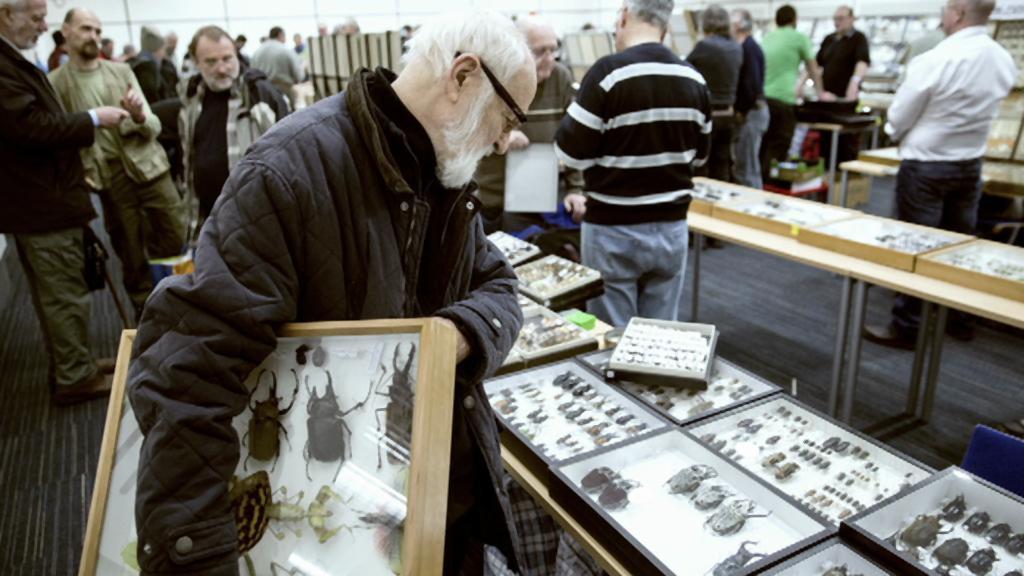 Jan Švankmajer vybírá brouky pro svůj film Hmyz