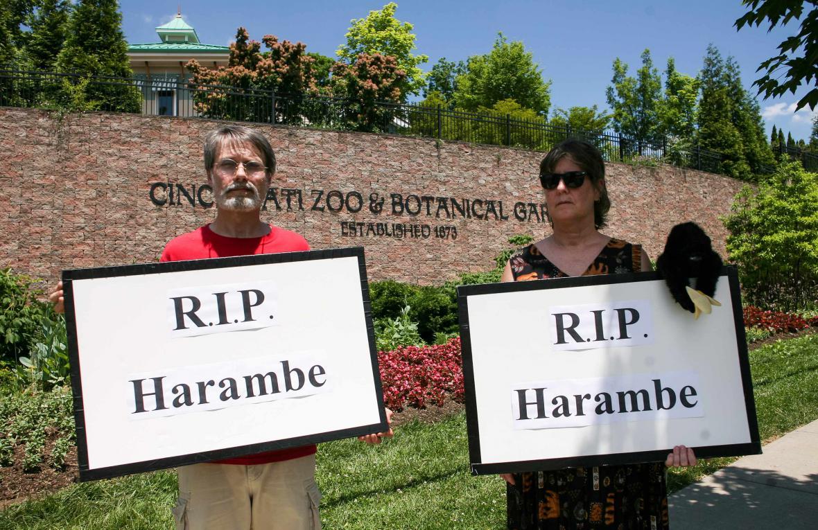 Lidé protestují proti zastřelení Harambeho