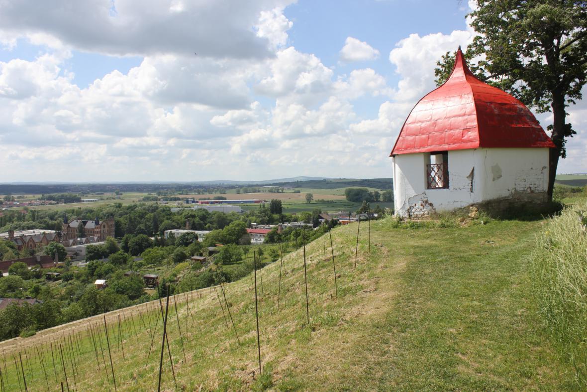 Pohled na zážitkovou vinici nad obcí