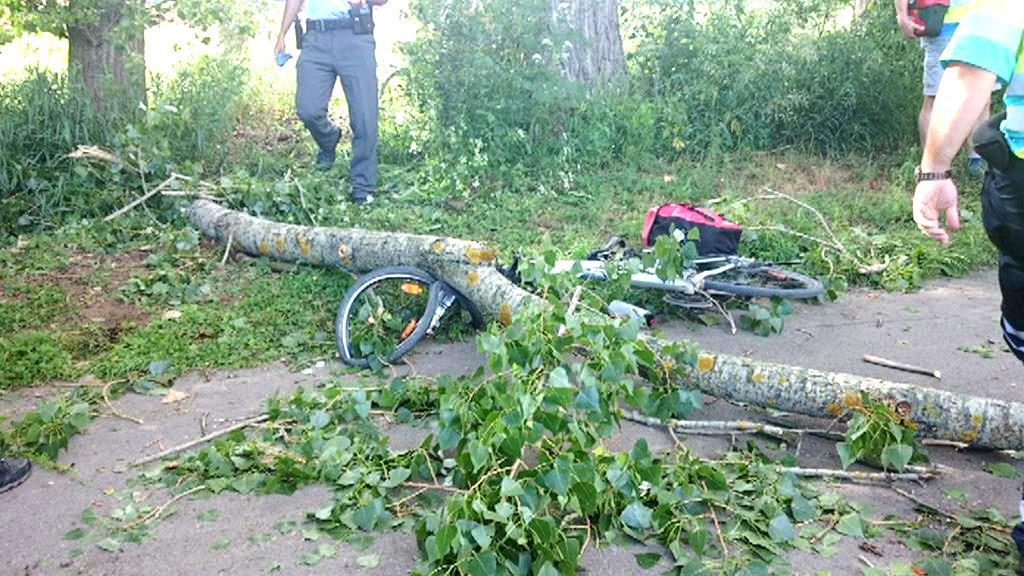 U Černošic zranila padající větev cyklistu