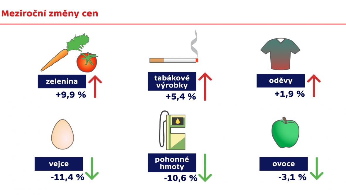 Meziroční změny cen