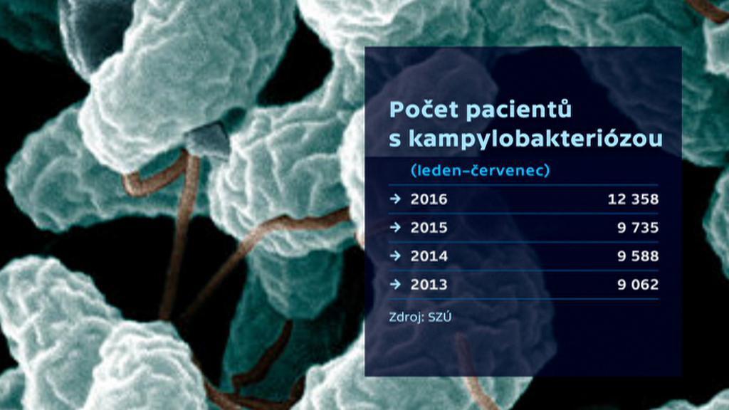 Kampylobakterióza