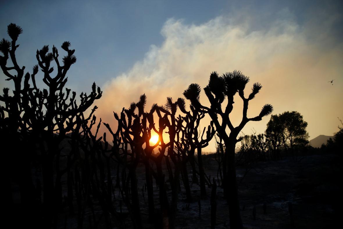 Rozsáhlý požár v Kalifornii