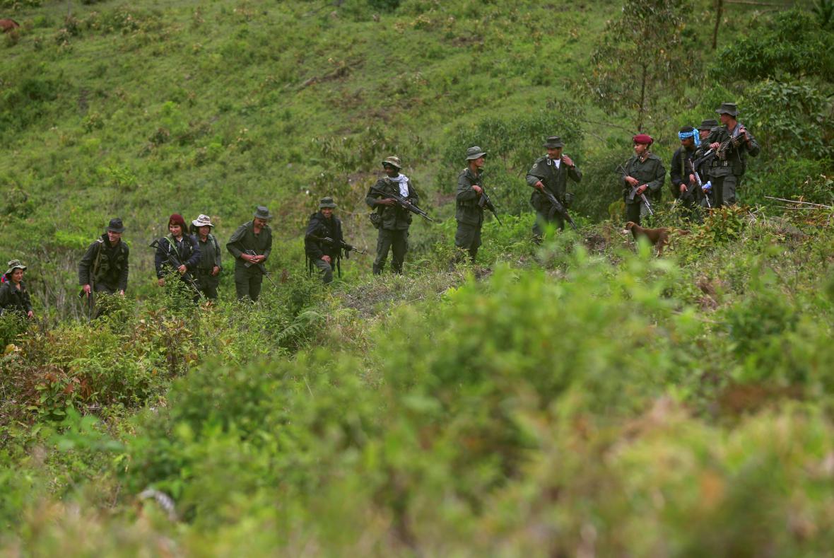 Milice z revolučních vojsk FARC