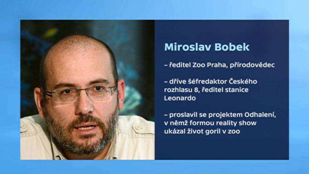 Bobek