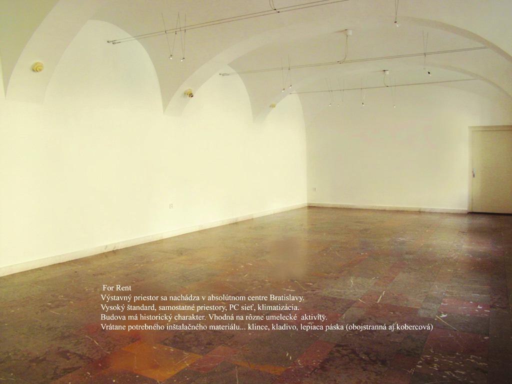 Olja Triaška Stefanović / For Rent, 2003
