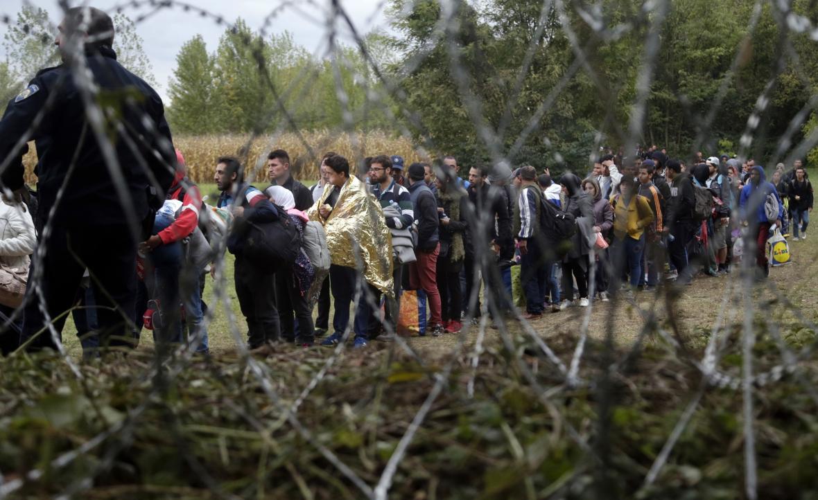 Běženci za maďarským ostnatým drátem