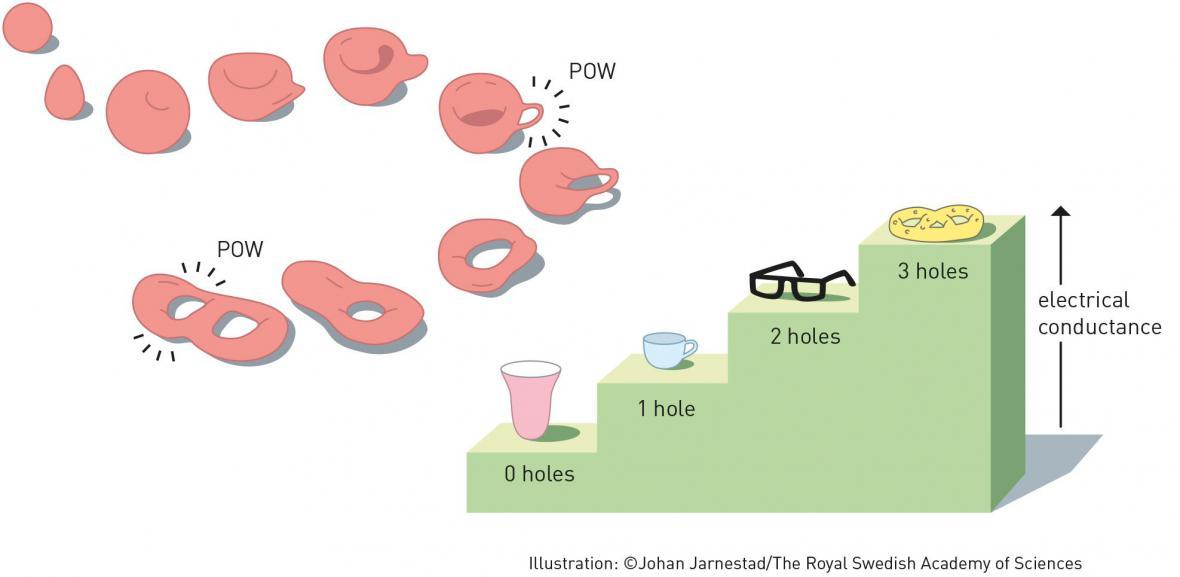Topologie hmoty