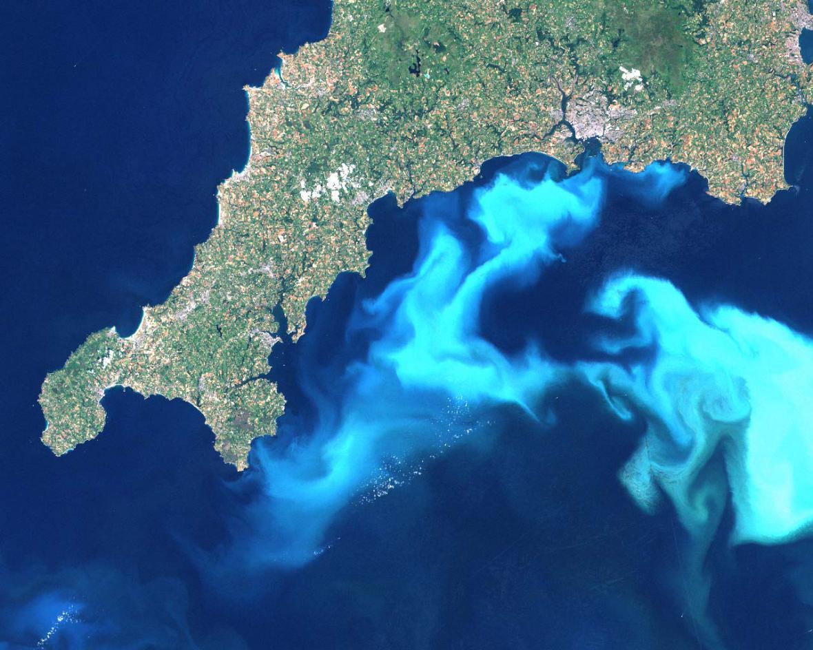 Vodní květ u Cornwallu