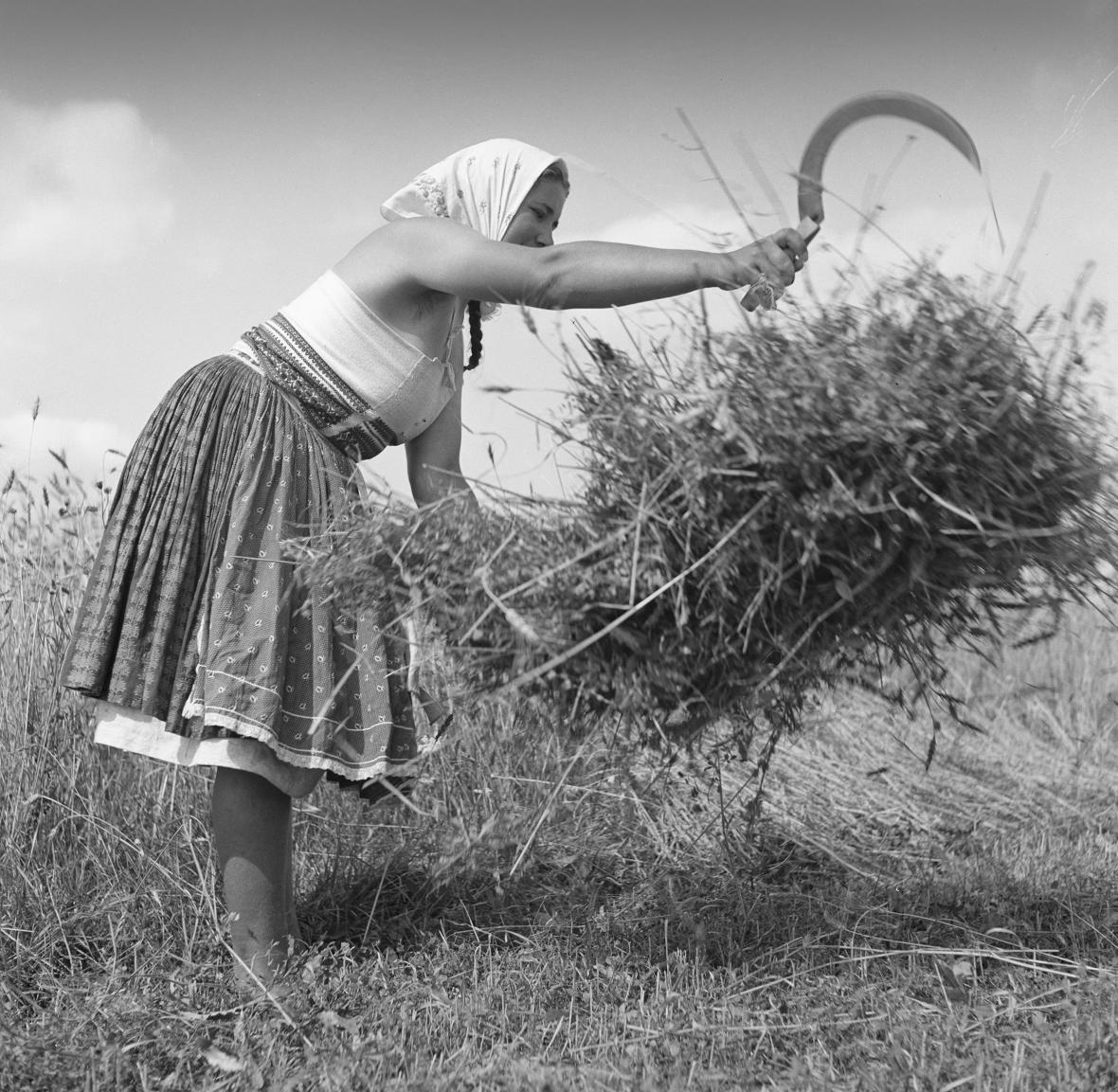 Z výstavy Ferdinand Bučina: Vzpomínka na Javorník